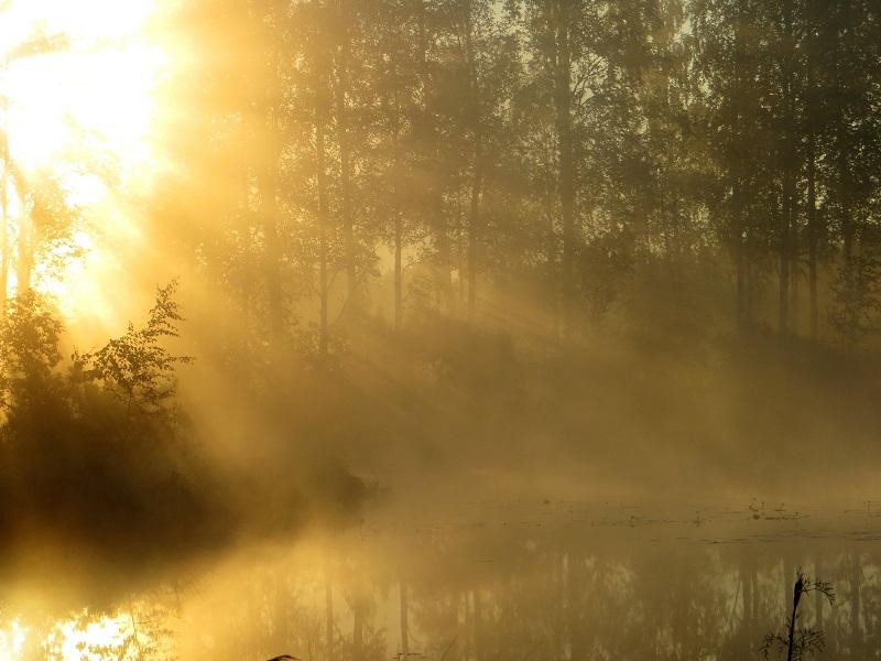 auringon säteet