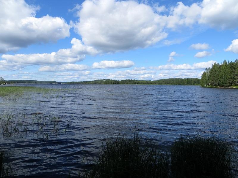 Nurmesjärvi