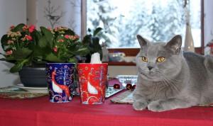 Kärkkäinen Joulukuusi