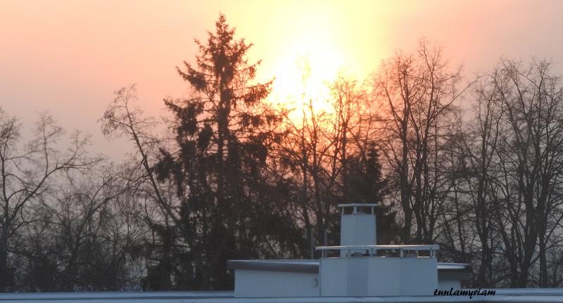aurinko 4