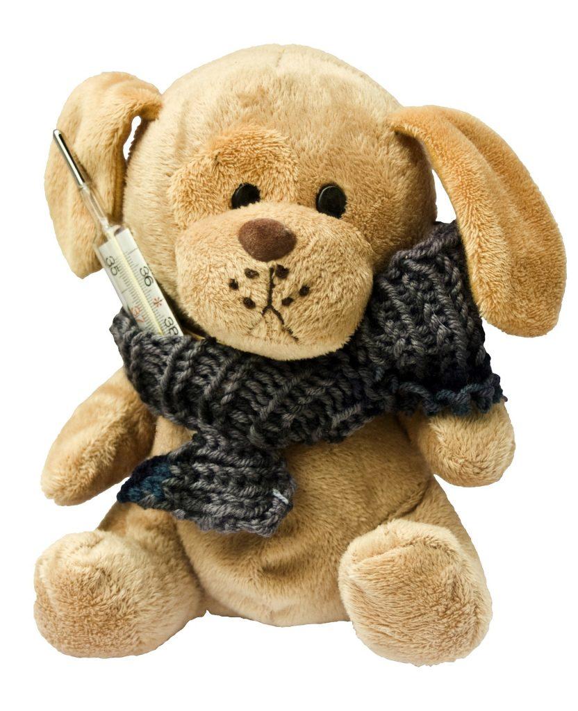 teddy-242878_1920
