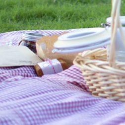 Piknik tarvikkeita ja eväitä viltin päällä.