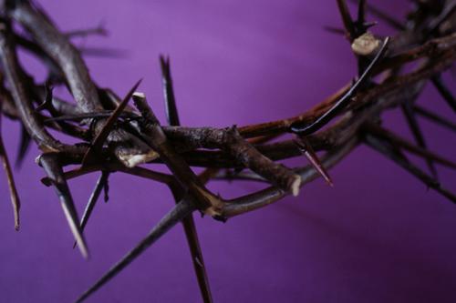 Orjantappurakruunu violetilla taustalla.